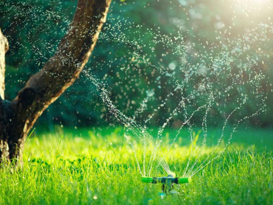 Save money and water with our irrigation services